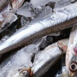 anchoa-caprice